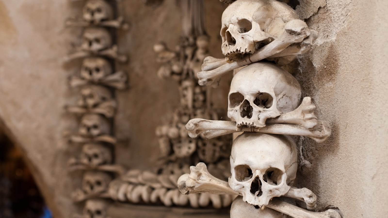 kutna hora day tour
